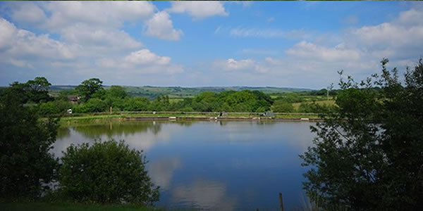 Oaktree Fishery Fishing Holidaus and self catering cottages in North Devon